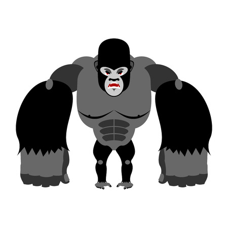 hind: Angry gorilla on its hind legs. Aggressive Monkey on white background. Wild wrathful animal. Large ferocious predator. African strong beast