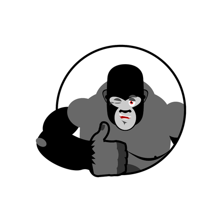 all ok: Gorilla thumbs up showing well. Sign all right. Cheerful monkey. Hand showing ok. gesture of  hand. Good wild animal