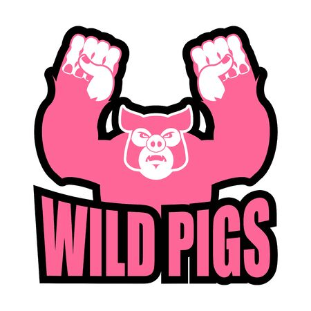 Wild pigs for sports team. Angry pig. Aggressive big boar. grumpy farm animal. Illustration