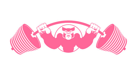 pig iron: Angry pig athlete. Barbell and Aggressive big boar. Evil wild animal bodybuilder.