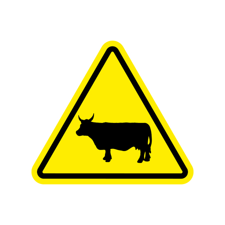 yellow beware: Cow Warning sign yellow. Farm Hazard attention symbol. Danger road sign triangle cattle
