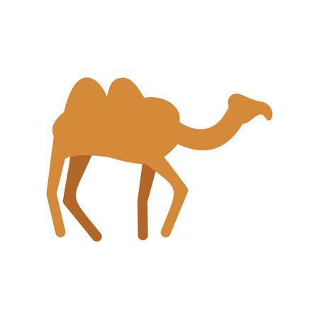 Camel isolated. Desert animals on white background