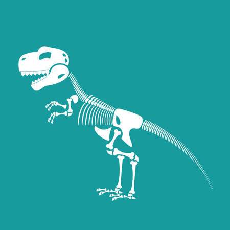 remains: Dinosaur skeleton isolated. Remains of Tyrannosaurus. Skull T-Rex. Prehistoric monster. Ancient reptiles. Predator Jurassic
