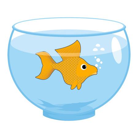 Goldfish in aquarium isolated. Magic marine animals