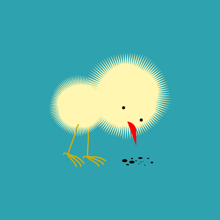 Chick isolated. Small Chicken. little farm yellow bird