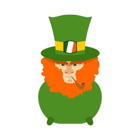 leprachaun: Leprechaun with red beard in pot. St. Patricks Day character. Irish holiday