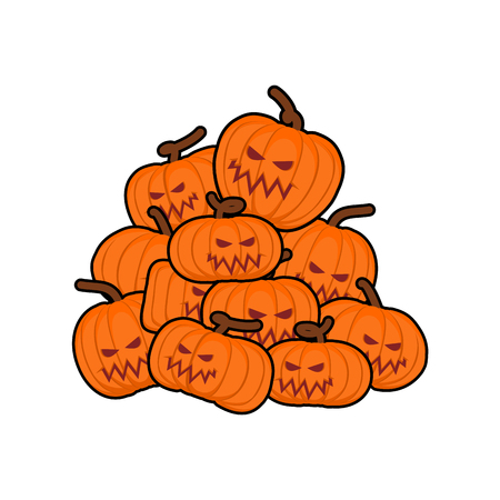 pumpkins pile for Halloween. Lot of vegetables for holiday
