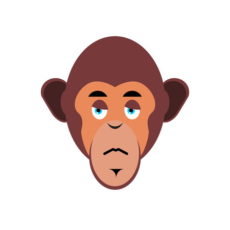 Monkey sad Emoji. marmoset unhappy emotion isolated. Chimpanzee face Illustration