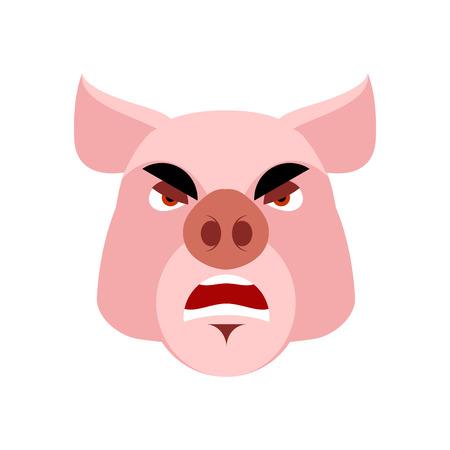 Angry pig. Evil boar. grumpy hog. Aggressive piggy Illustration