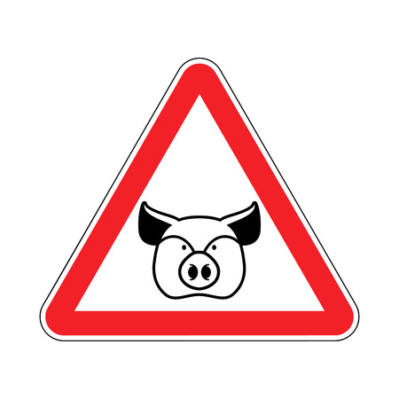 porcine: Warning Pig. swine on red triangle. Road sign attention to farm animal Illustration