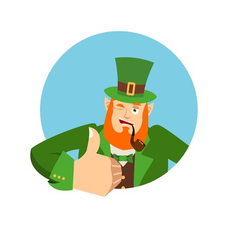 Happy St.Patrick 's Day. Leprechaun winks. Dwarf with red beard thumbs up. Irish elf emotions. Holiday in Ireland Banco de Imagens - 72669371