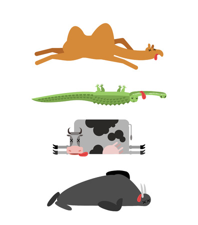 zoo dry: Dead animals set 4. Camel and crocodile. Cow and walrus. animal is death. Corpse of Beast