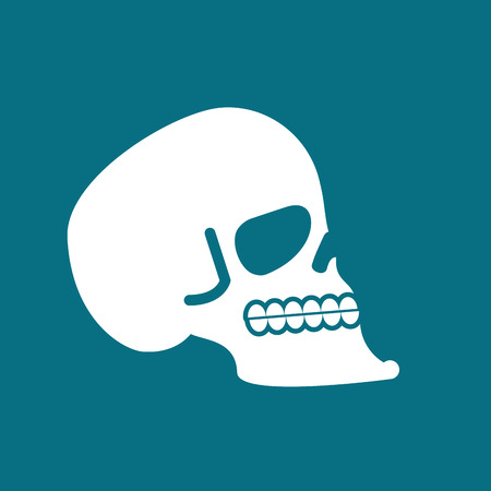 bleak: Skull isolated. head of human skeleton. Anatomy illustration