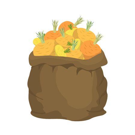 money sack: Turnip Burlap bag. sack of vegetables. big crop on farm. sackful Turnips Illustration