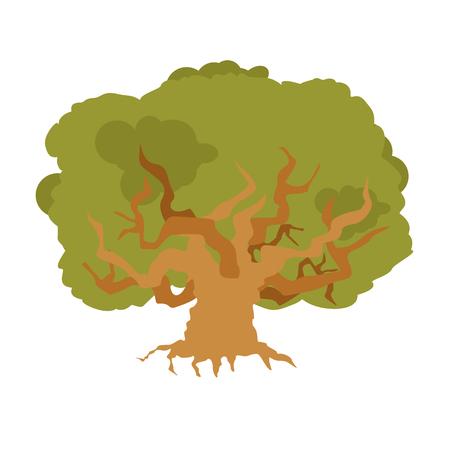 Oak isolated. large old tree. Huge bush 矢量图片