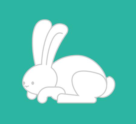 fleecy: White Rabbit isolated. cute Hare. bunny Animal.