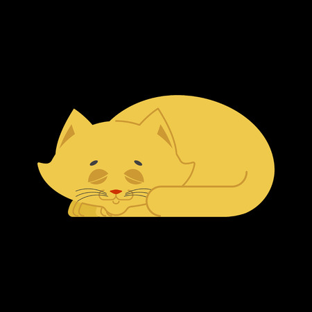 Sleeping cat yellow isolated. kitten be asleep sleep pet.