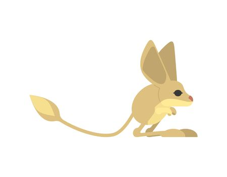 Jerboa isolated. Steppe animal on white background