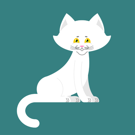 White Cat isolated. cute kitten is sitting. Pet