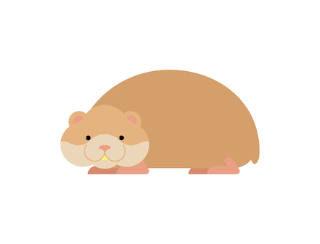 Hamster isolated. Cute pet on white background. Home rodent Illustration