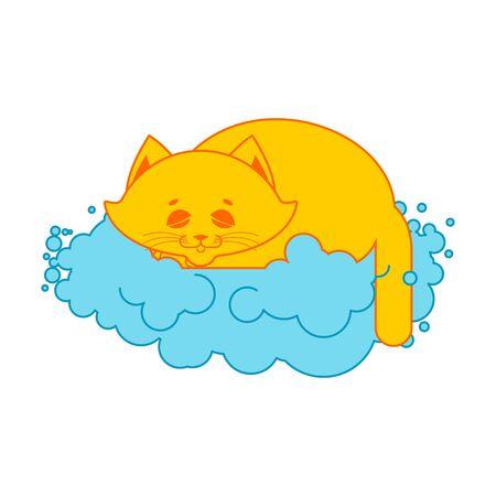 cat sleeps on cloud. Soft fluffy pet and cloud