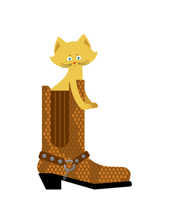 lair: Cat in boot isolated. Home pet in shoes