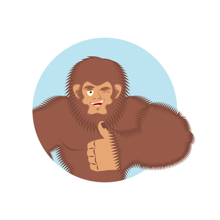 Bigfoot thumbs up. Yeti winks emoji. Abominable snowman cheerful. Vector illustration Illustration