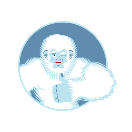 Yeti thumbs up. Bigfoot winks emoji. Abominable snowman cheerful. Vector illustration