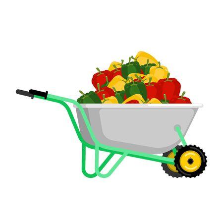 Wheelbarrow and pepper. vegetables in garden trolley. big harvest Vector Illustration Illustration