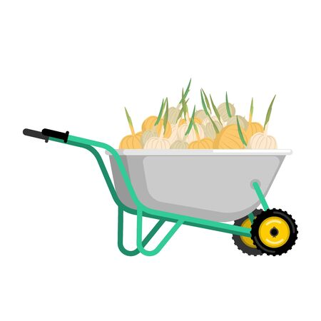 Wheelbarrow and onion. vegetables in garden trolley. big harvest Vector Illustration