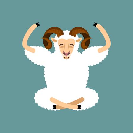 yogi: Ram yoga. Sheep Farm Animal yogi isolated. Relaxation and meditation. Vector illustration Illustration