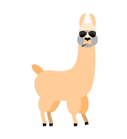 Cool Lama Alpaca serious. Animal smoking cigar emoji. Beast strict. Vector illustration