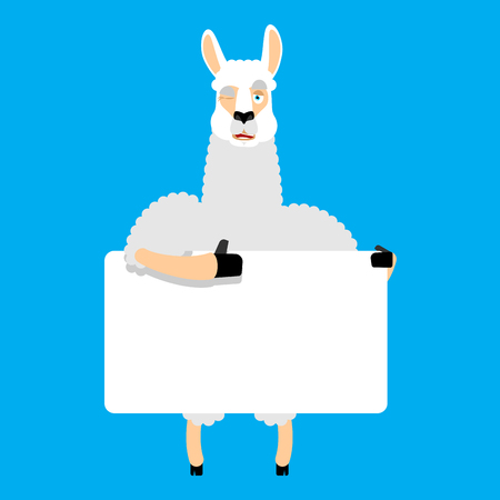 Lama Alpaca holding banner blank. Animal and white blank. Beast thumb up and winks joyful emotion. place for text. Vector illustration Illustration