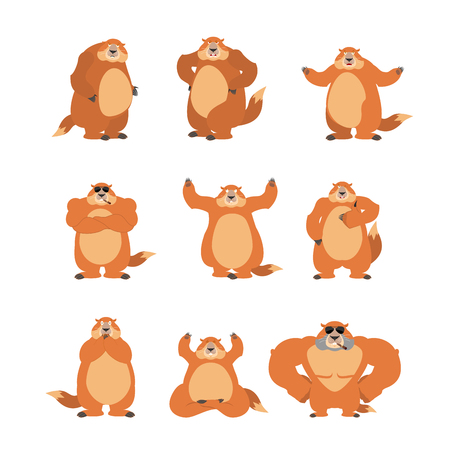 Groundhog set poses and motion. Woodchuck happy and yoga. Marmot sleeping and angry. guilty and sad. Groundhog day vector illustration.