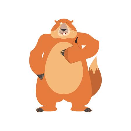 Groundhog thumbs up and winks. Woodchuck happy emoji. Illustration