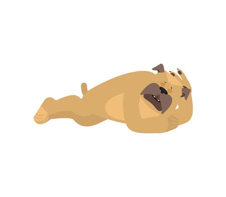Dog sleeping. Pet asleep emotions. Bulldog dormant. Vector illustration.