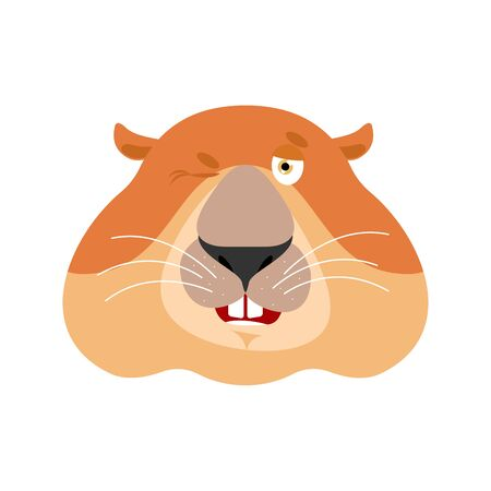 Groundhog wink emoji. Woodchuck merry emotions. Marmot Joyful. Groundhog day Vector illustration Illustration
