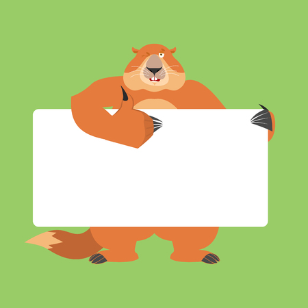 Groundhog holding banner blank. Woodchuck and white blank. Marmot thumb up and winks joyful emotion. place for text. Groundhog day Vector illustration