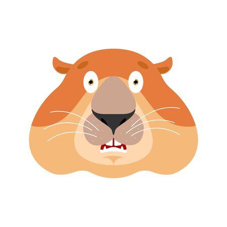 Groundhog scared OMG. Woodchuck Oh my God emoji. Frightened Marmot. Groundhog day Vector illustration