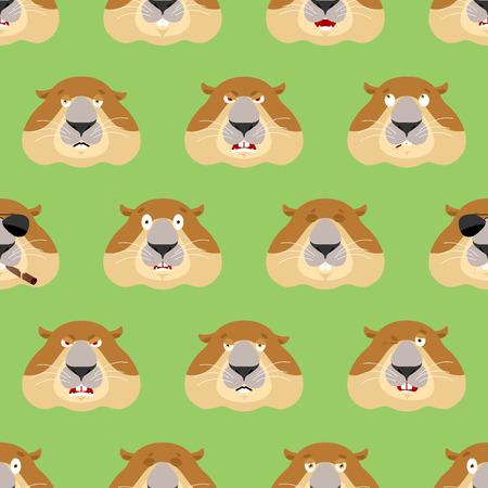 Groundhog head pattern. Woodchuck background. Ornament face Marmot. Groundhog day Vector illustration