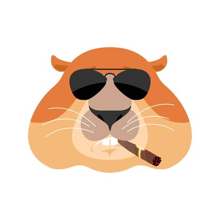 Groundhog Cool serious avatar of emotions. Woodchuck smoking cigar emoji. Marmot strict. Groundhog day Vector illustration