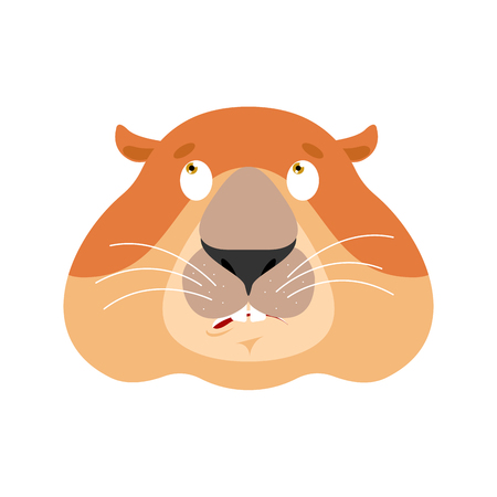 Groundhog confused emoji oops. Woodchuck perplexed emotions. Marmot surprise. Groundhog day Vector illustration Illustration
