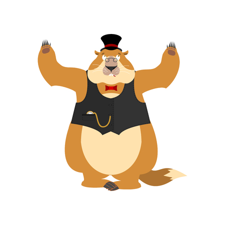 Groundhog day. Groundhog in Hat  confused oops. Woodchuck perplexed emotions. Marmot surprise. Vector illustration Illustration