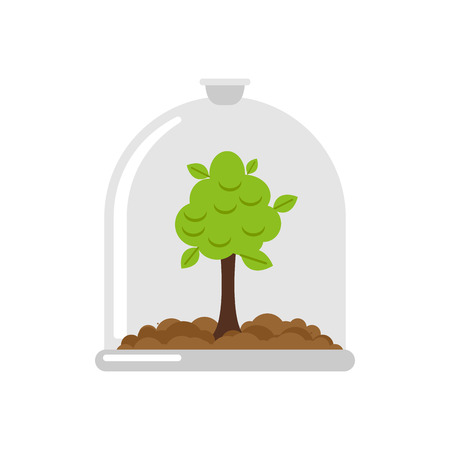 Plant in Glass Bell. Laboratory jar and wood. For poster about environment.