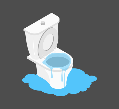 Toilet clogged Isometry. Leakage canalization. Litter in WC