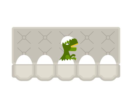 Packing eggs hatched dragon isolated. Vector illustration