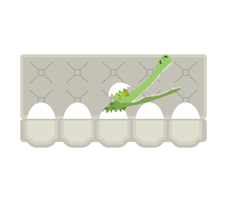 Packing eggs hatched crocodile isolated. Vector illustration