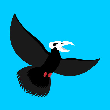 Black bird with skull. Crow of death vector illustration.