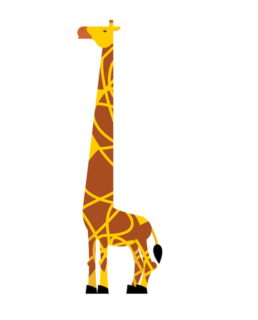 Giraffe isolated, Savannah animal, wild beast vector illustration.