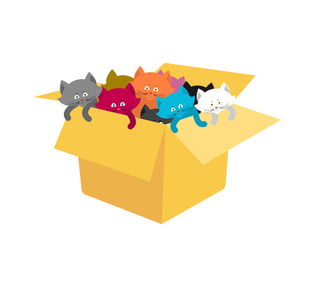 Box with kittens. Cats in cardboard box. Vector illustration